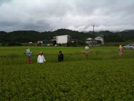 wakako_iphone 010.jpg