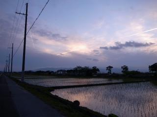 wakako_ricoh 059.jpg