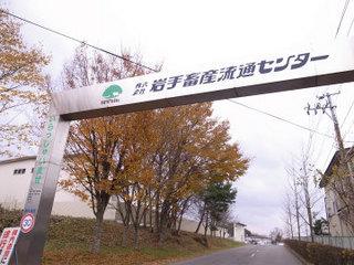 wakako_ricoh 152.jpg