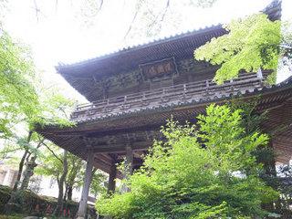 wakako_ricoh 157.jpg