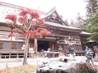 wakako_ricoh 202.jpg