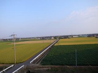 wakako_ricoh 226.jpg