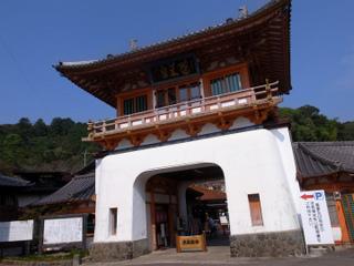 wakako_ricoh 236.jpg