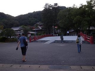 wakako_ricoh 287.jpg
