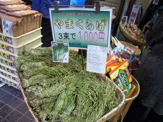 wakako_ricoh 564.jpg
