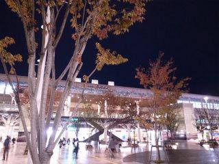wakako_ricoh 764.jpg
